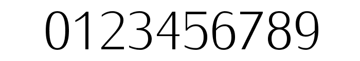 IwonaLight-Regular Font OTHER CHARS