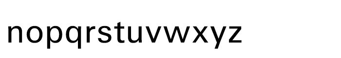 Iwata Gothic Old Pr6 Medium Font LOWERCASE