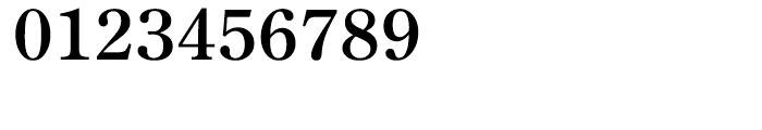 Iwata Mincho Old Pr6 Bold Font OTHER CHARS