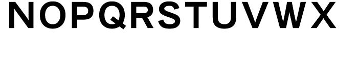 Iwata New Gothic Pro Bold Font UPPERCASE