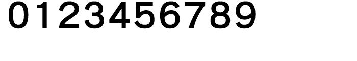 Iwata New Gothic Pro Medium Font OTHER CHARS