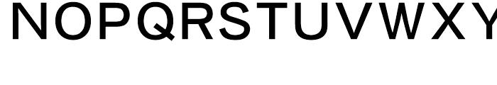 Iwata New Gothic Pro Medium Font UPPERCASE
