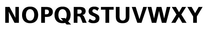 Iwata UD Gothic Display Heavy Font UPPERCASE
