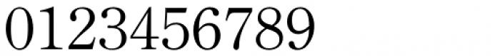 Iwata News Mincho Pro Thin Font OTHER CHARS