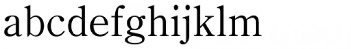 Iwata News Mincho Pro Thin Font LOWERCASE