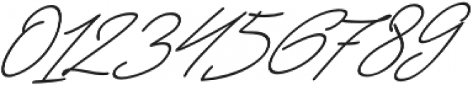 Jackson Script Slant otf (400) Font OTHER CHARS