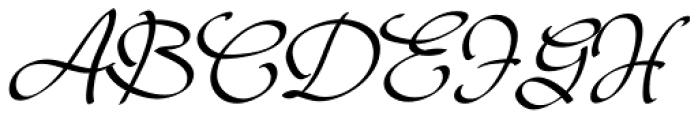 Janagrace Swash Font UPPERCASE