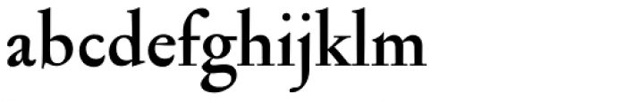 Jannon Antiqua Bold Font LOWERCASE