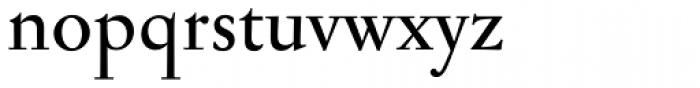 Jannon Antiqua Medium Font LOWERCASE