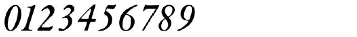 Janson SB Italic Font OTHER CHARS
