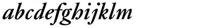 Janson Std Bold Italic Font LOWERCASE