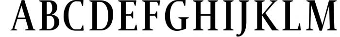 Jerrick Serif 6 Font Pack 1 Font UPPERCASE