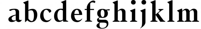 Jerrick Serif 6 Font Pack 1 Font LOWERCASE