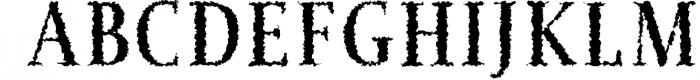 Jerrick Serif 6 Font Pack 2 Font UPPERCASE