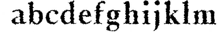Jerrick Serif 6 Font Pack 2 Font LOWERCASE