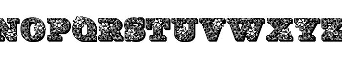 JFHollyBows Font LOWERCASE
