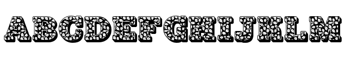 JFHollyNites Font UPPERCASE