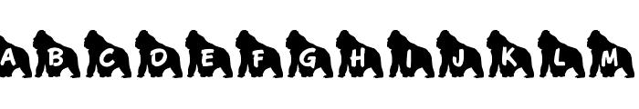JLR Koko Gorilla Good Font UPPERCASE