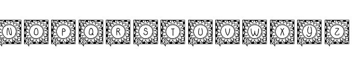 JLR Sunflower Font UPPERCASE