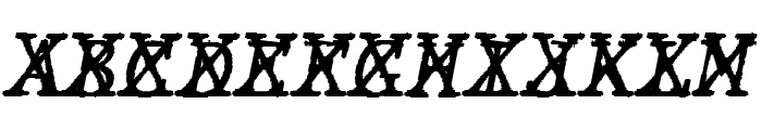 JMHTypewritermonoCross-Italic Font UPPERCASE