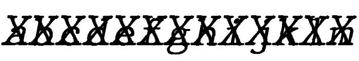 JMHTypewritermonoCross-Italic Font LOWERCASE
