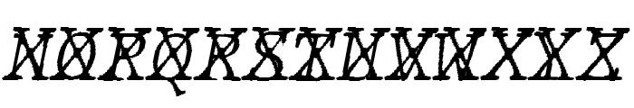 JMHTypewritermonoFineCross-Ital Font UPPERCASE