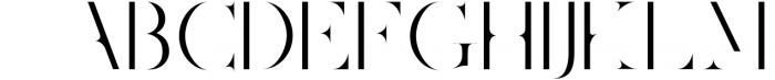 Joshua Tree | A Gorgeous Serif Font LOWERCASE