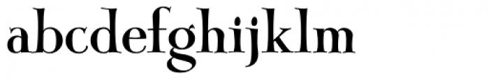 John Andrew JF Font LOWERCASE