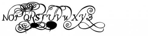 John Speed Ornamental Font LOWERCASE