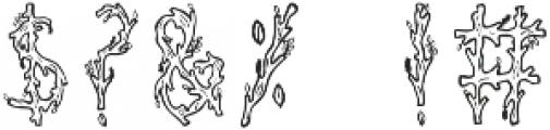 Juniper Regular otf (400) Font OTHER CHARS