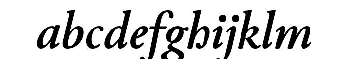 Junicode Bold Italic Font LOWERCASE