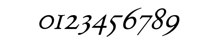 Junius Italic Font OTHER CHARS