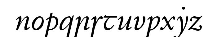 Junius Italic Font LOWERCASE