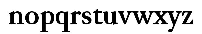 JuniusModern Bold Font LOWERCASE