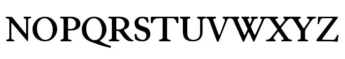 JuniusStandard Bold Font UPPERCASE