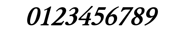 JuniusStandard BoldItalic Font OTHER CHARS