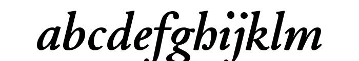 JuniusStandard BoldItalic Font LOWERCASE