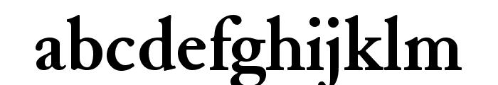 JuniusStandard Bold Font LOWERCASE
