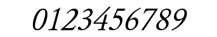 JuniusStandard Italic Font OTHER CHARS