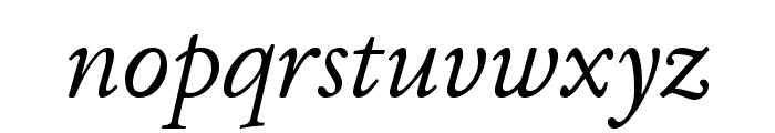 JuniusStandard Italic Font LOWERCASE