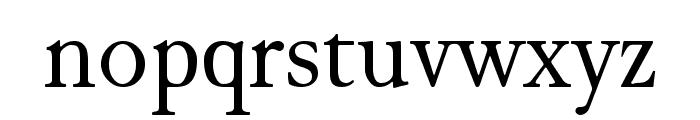 JuniusStandard Font LOWERCASE