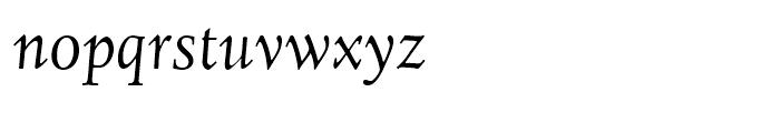 Juliana Text Italic Font LOWERCASE