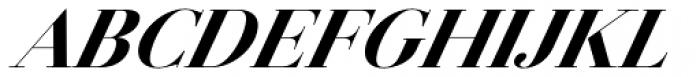 Jules Big Black Italic Font UPPERCASE