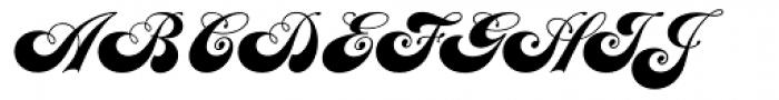 Julia Script Font UPPERCASE