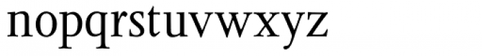 Juliana Text Roman Font LOWERCASE