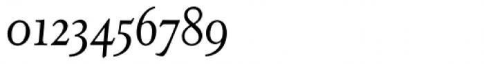 Juliana Text Std Italic Font OTHER CHARS