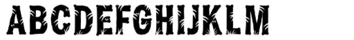 Jungle Bones Normal Font UPPERCASE