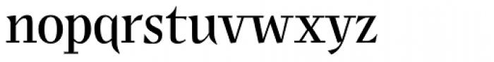 JY Shapa Regular Font LOWERCASE