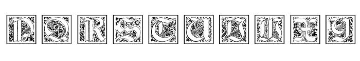 KaiserRotbartOneCaps Font OTHER CHARS