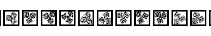 KaleidWieynckFrax Font LOWERCASE